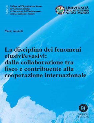 Immagine di 33 - La disciplina dei fenomeni elusivi/evasivi: dalla collaborazione tra fisco e contribuente alla cooperazione internazionale