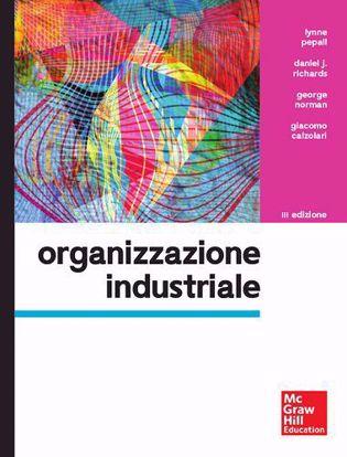 Immagine di Organizzazione industriale