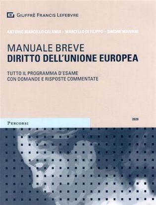Immagine di Diritto dell'Unione europea. Tutto il programma d'esame con domande e risposte commentate