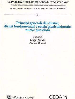 Immagine di Principi generali del diritto, diritti fondamentali e tutela giurisdizionale: nuove questioni.