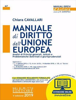 Immagine di Manuale di diritto dell'Unione Europea. Analisi dei principi generali; Istituti e problematiche dottrinali e giurisprudenziali. Con espansione online