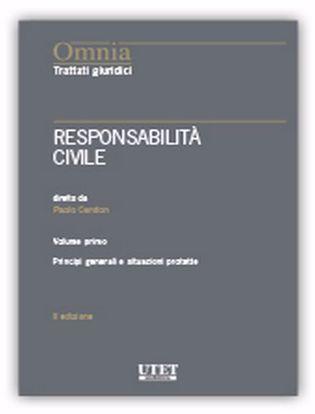 Immagine di Responsabilità civile