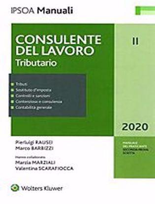 Immagine di Consulente del lavoro. Vol. 2