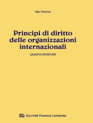 Immagine di Principi di diritto delle organizzazioni internazionali