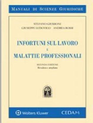 Immagine di Infortuni sul lavoro e malattie professionali.