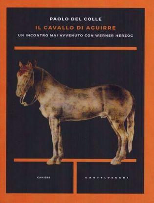 Immagine di Il cavallo di Aguirre.
