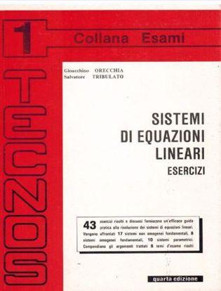 Immagine di Sistemi di equazioni lineari. Esercizi Vol. 1