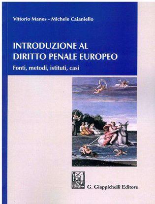 Immagine di Introduzione al diritto penale europeo. Fonti, metodi, istituti, casi.