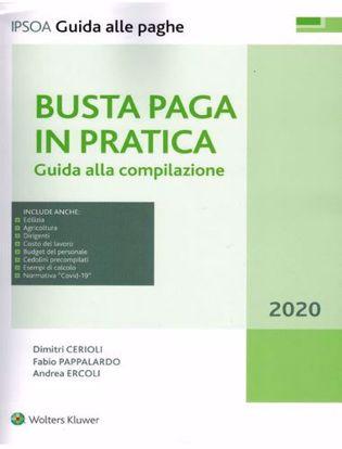Immagine di Busta paga in pratica 2020. Guida alla compilazione