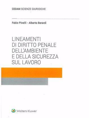 Immagine di Lineamenti di diritto penale dell'ambiente e della sicurezza sul lavoro.