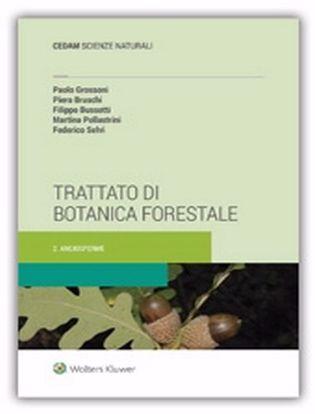 Immagine di Trattato di botanica forestale. Vol. 2: Angiosperme