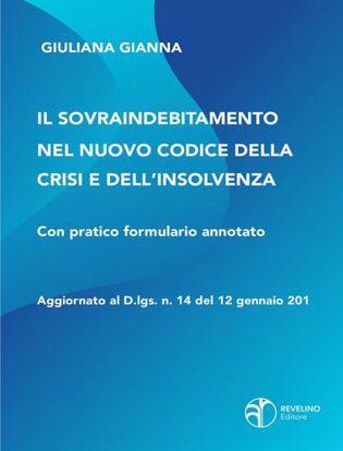 Immagine di Il sovraindebitamento nel nuovo codice della crisi e dell'insolvenza. Aggiornato al D.lgs. n.14 del 12 gennaio 2019