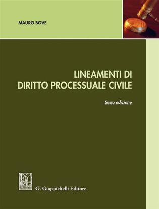 Immagine di Lineamenti di diritto processuale civile