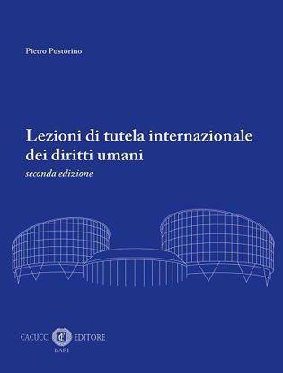 Immagine di Lezioni di tutela internazionale dei diritti umani - 2^ edizione