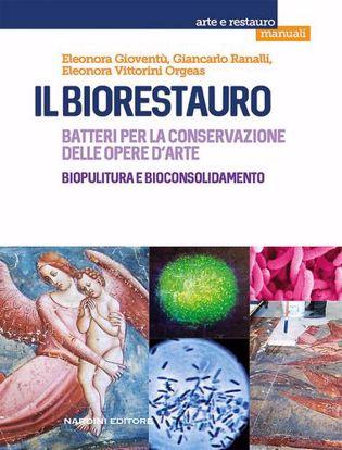 Immagine di Il biorestauro. Batteri per la conservazione delle opere d'arte. Biopulitura e bioconsolidamento