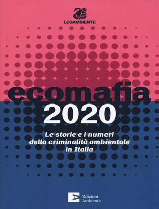 Immagine di Ecomafia 2020. Le storie e i numeri della criminalità ambientale in Italia