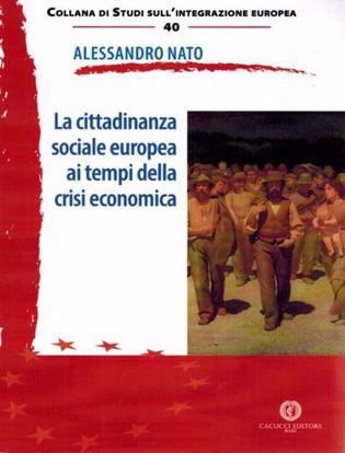 Immagine di 40 - La cittadinanza sociale europea ai tempi della crisi economica