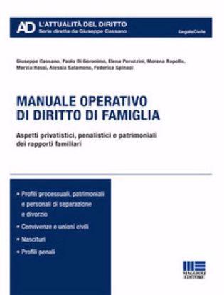 Immagine di Manuale operativo di diritto di famiglia