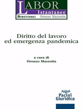 Immagine di Diritto del lavoro ed emergenza pandemica