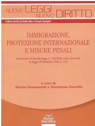 Immagine di Immigrazione protezione internazionale e misure penali