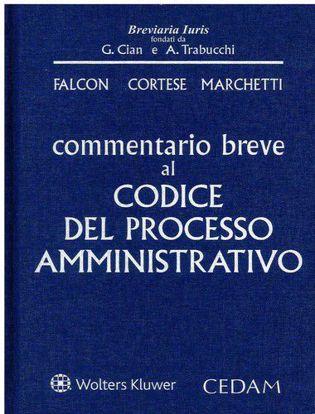 Immagine di Commentario breve al codice del processo amministrativo
