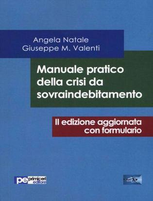 Immagine di Manuale pratico della crisi da sovraindebitamento