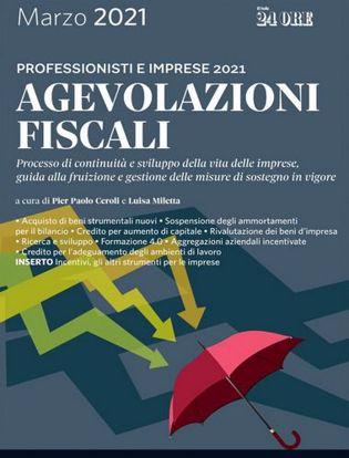 Immagine di Agevolazioni fiscali 2021. Professionisti e imprese