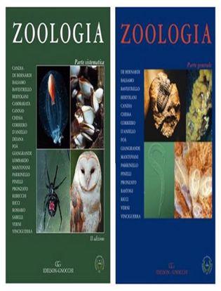 Immagine di Zoologia. Parte sistematica-Zoologia. Parte generale Vol 1-2 Tomo 2