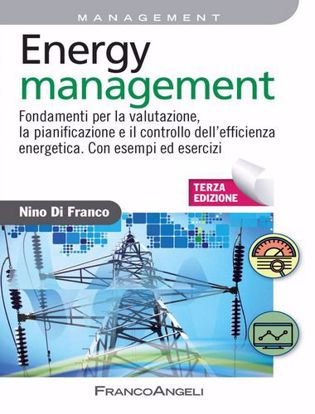 Immagine di Energy management. Fondamenti per la valutazione, la pianificazione e il controllo dell'efficienza energetica. Con esempi ed esercizi