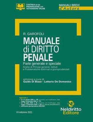 Immagine di Manuale di diritto penale. Parte generale e spaciale. Analisi di Principi generali, Istituti e Problematiche dottrinali e giurisprudenziali