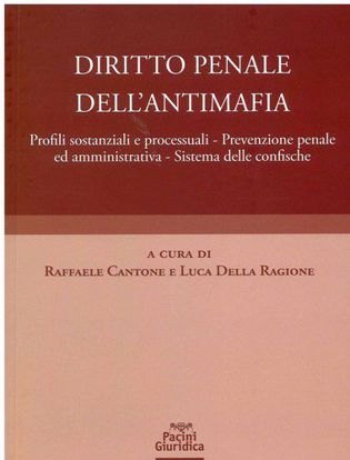 Immagine di Diritto Penale dell'Antimafia. Profili sostanziali e processuali - Prevenzione penale ed amministrativa - Sistema delle confische