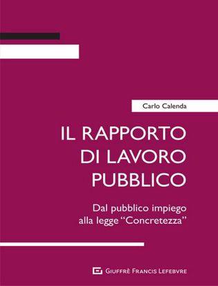 Immagine di Il rapporto di lavoro pubblico. Dal pubblico impiego alla legge «Concretezza»