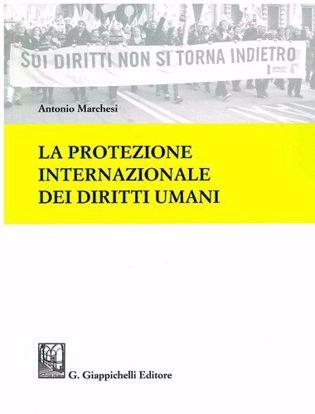 Immagine di La protezione internazionale dei diritti umani