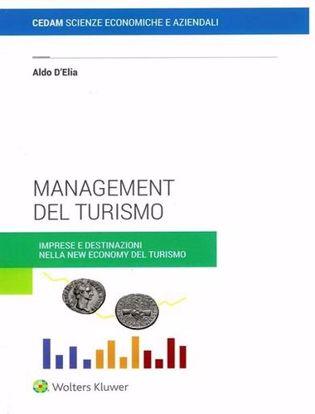 Immagine di Management del turismo. Imprese e destinazioni nella new economy del turismo