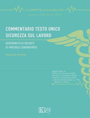 Immagine di Commentario Testo Unico Sicurezza sul lavoro. Aggiornato ai decreti di urgenza coronavirus
