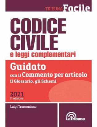 Immagine di Codice civile e leggi complementari. Guidato con il commento per articolo, il glossario, gli schemi