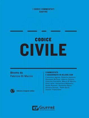 Immagine di Codice civile commentato