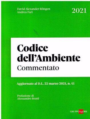 Immagine di Codice dell'ambiente 2021 commentato
