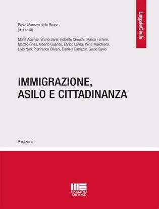 Immagine di Immigrazione, asilo e cittadinanza