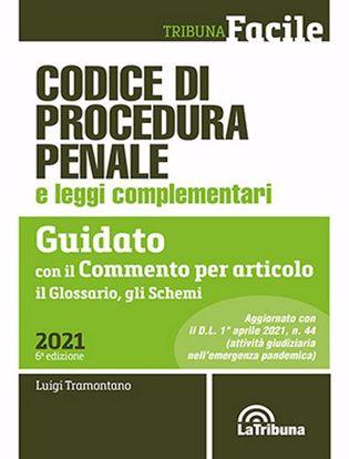 Immagine di Codice di procedura penale e leggi complementari. Guidato con il commento per articolo, il glossario, gli schemi