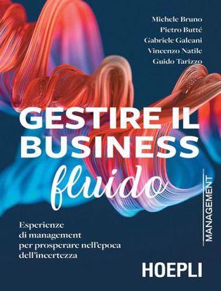 Immagine di Gestire il business fluido. Esperienze di management per prosperare nell'epoca dell'incertezza