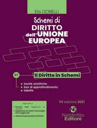 Immagine di Schemi di Diritto dell'Unione Europea 2021