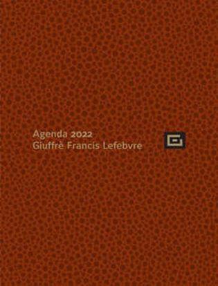 Immagine di Agenda Studio 2022 + Udienza Marrone