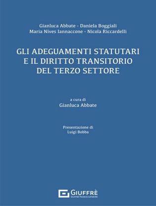 Immagine di Gli adeguamenti statutari e il diritto transitorio del terzo settore