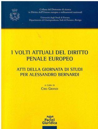 Immagine di Volti attuali del diritto penale europeo