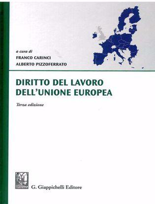 Immagine di Diritto del lavoro dell'Unione Europea