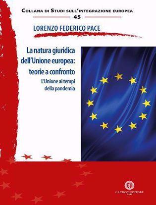 Immagine di 45 - La natura giuridica dell'Unione europea: teorie a confronto. L'Unione ai tempi della pandemia