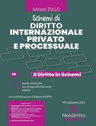 Immagine di Schemi di diritto internazionale privato e processuale