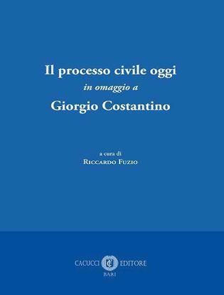 Immagine di Il processo civile oggi in omaggio a Giorgio Costantino