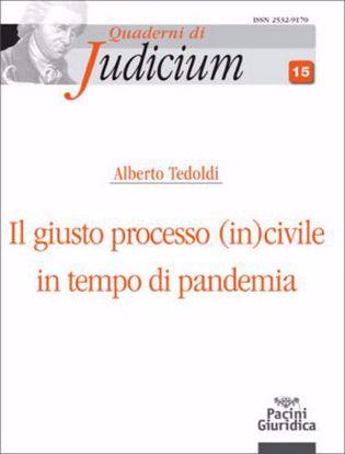 Immagine di Il giusto processo (in)civile in tempo di pandemia